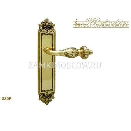 Дверная ручка на планке пустышка MELODIA mod.230 GEMINI PASS полированная латунь